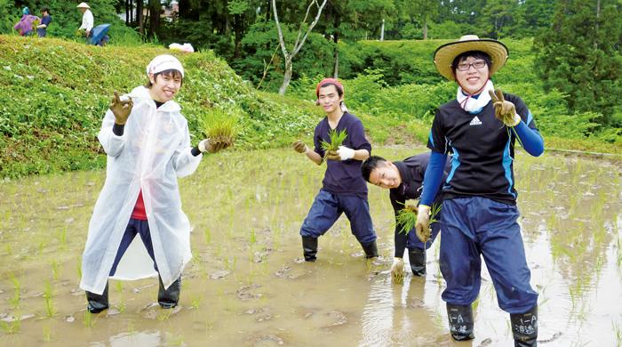 6月 食育実習 稲作