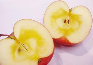 1020号 りんごの蜜