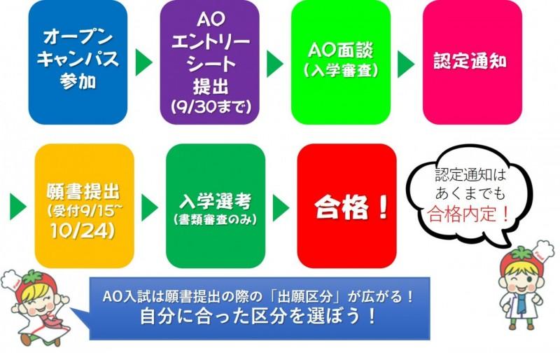 AO合格までのスケジュール